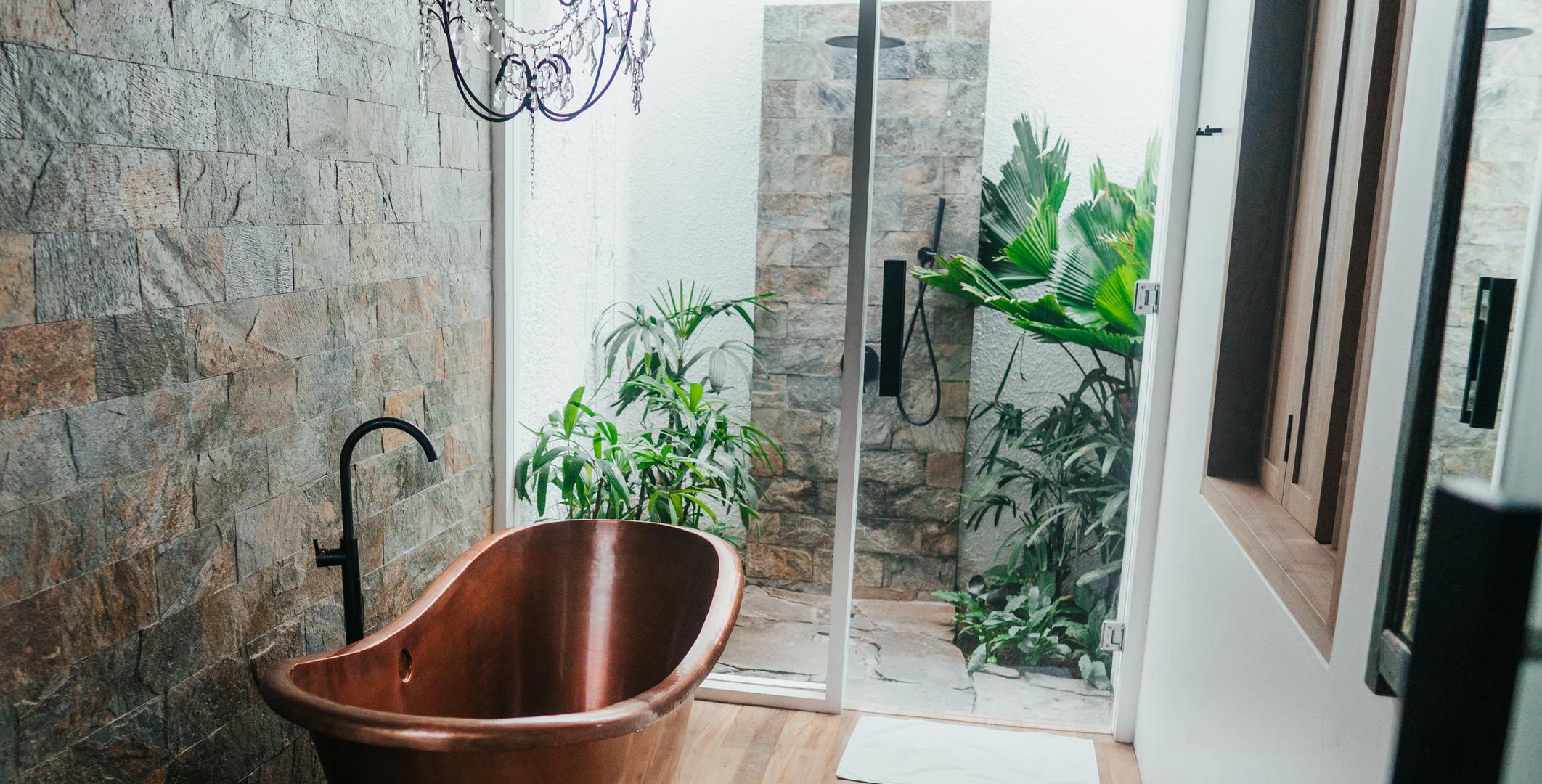 16 кращих рослин для ванної кімнати